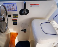 Bayliner Discovery 246 (Video) 8
