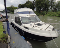 Reinell Flybridge Motorboot mit Trailer(TK) 1